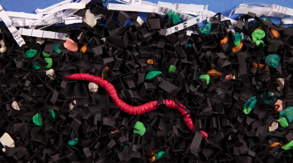 Still of a video about vermicomposting video