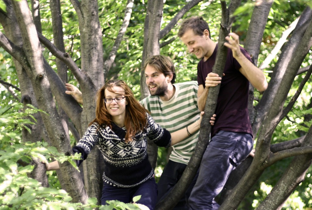Permaculture Commons Team